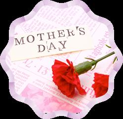 母の日や記念日に